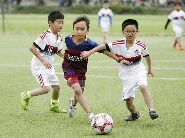 thừa thiên huế phát triển bóng đá